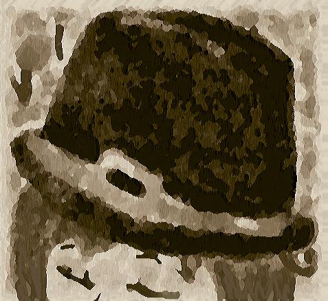 Pilgrim Head? by Forestdahedgehog