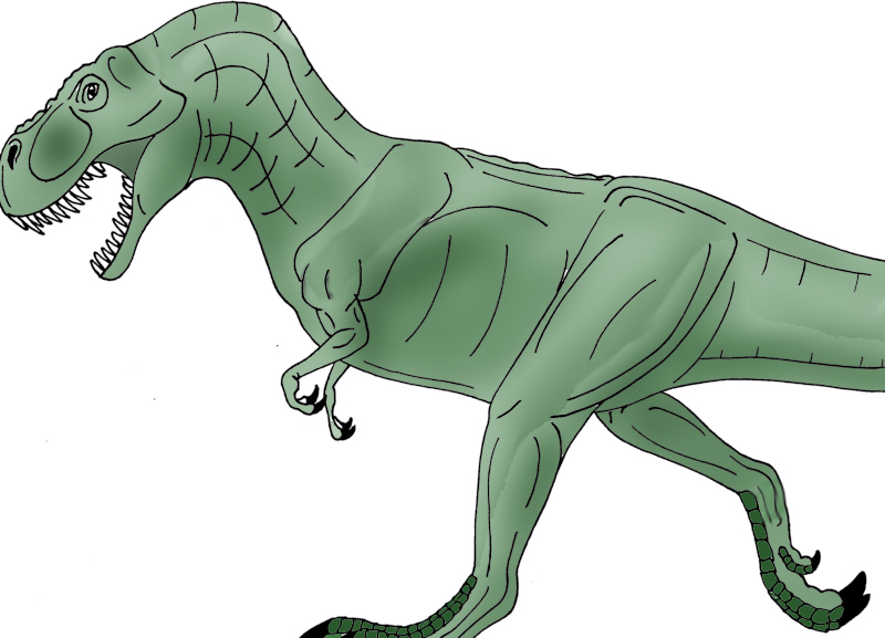 Tyrannosaurus rex by FreddyJasonV