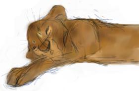 lion cub (taka) by flux