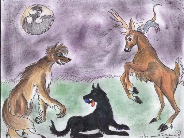 animals playing by greyhound