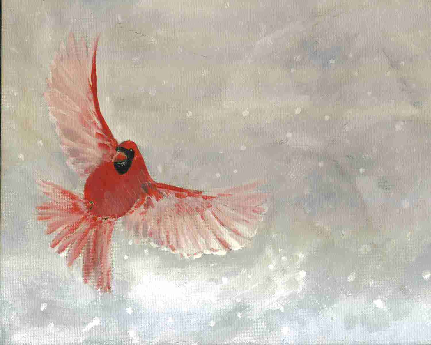 Cardinal in winter by Heatherenie