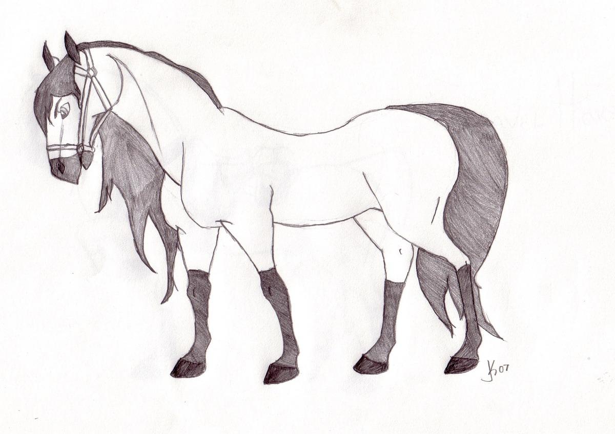 Spirit horse by HoRsEwIsPeReR396