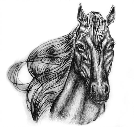 Horse 2 by Hoodie