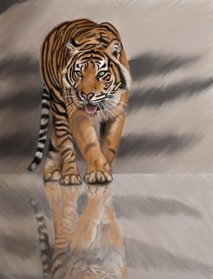 tiger by Hurdygurdymushroomman