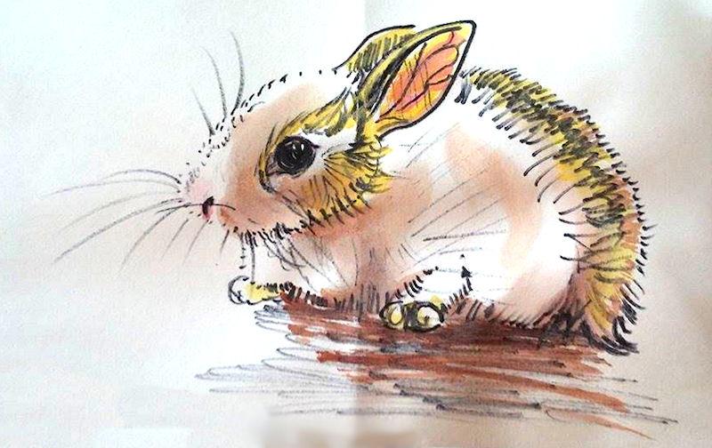 Bunny by Icalatari