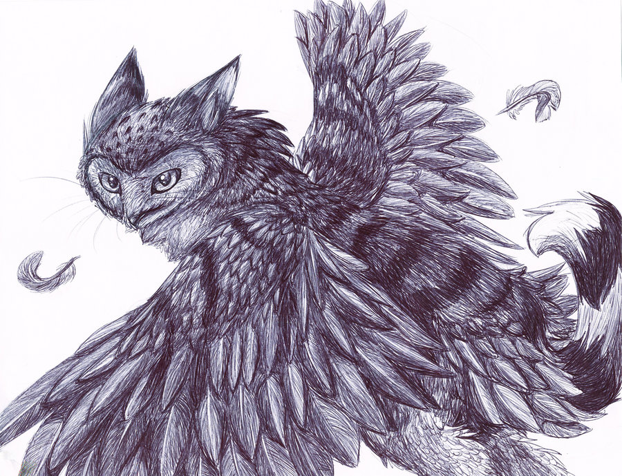 Owl Cat by InvaderTigerstar
