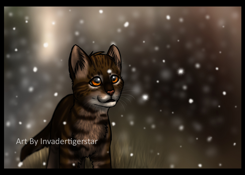 Bramblepaws's First Snow by InvaderTigerstar