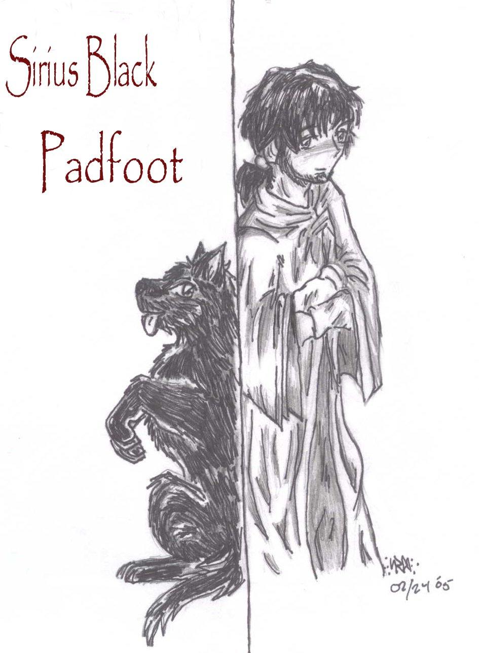 Sirius Black, Padfoot by ivygreane