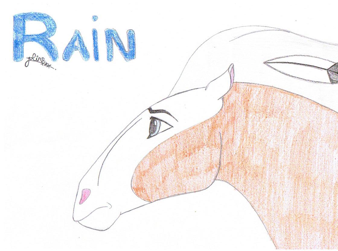 rain by joline