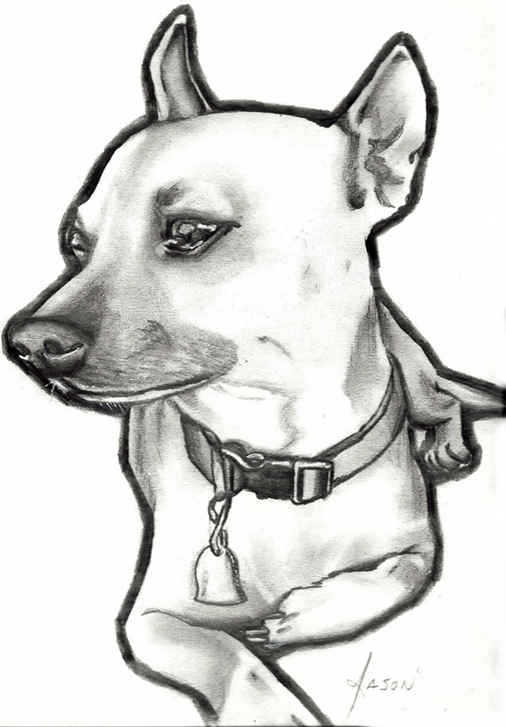 Dog by Kat2006