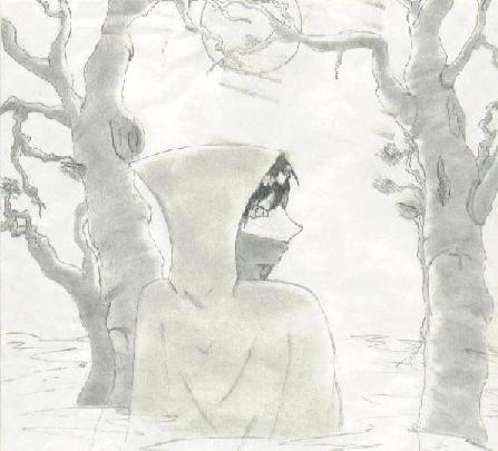 Shadow Walker by Kudasai
