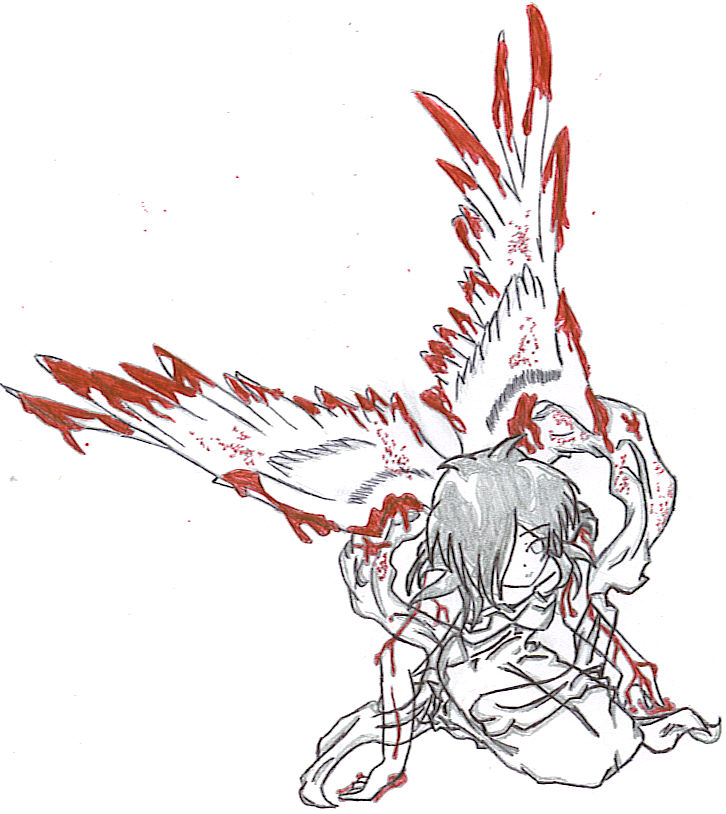 These blood splattered wings by kaname_yasha5689