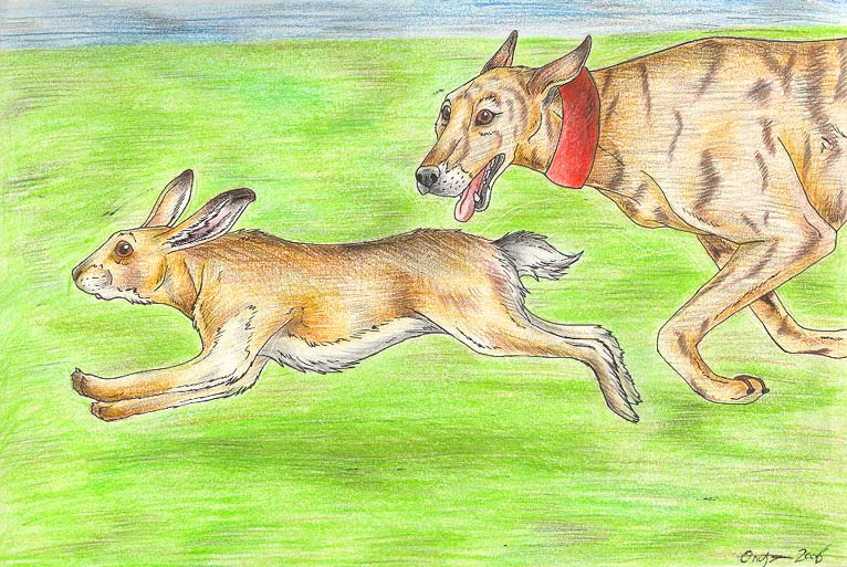 Hare Coursing by LiquidOnyx