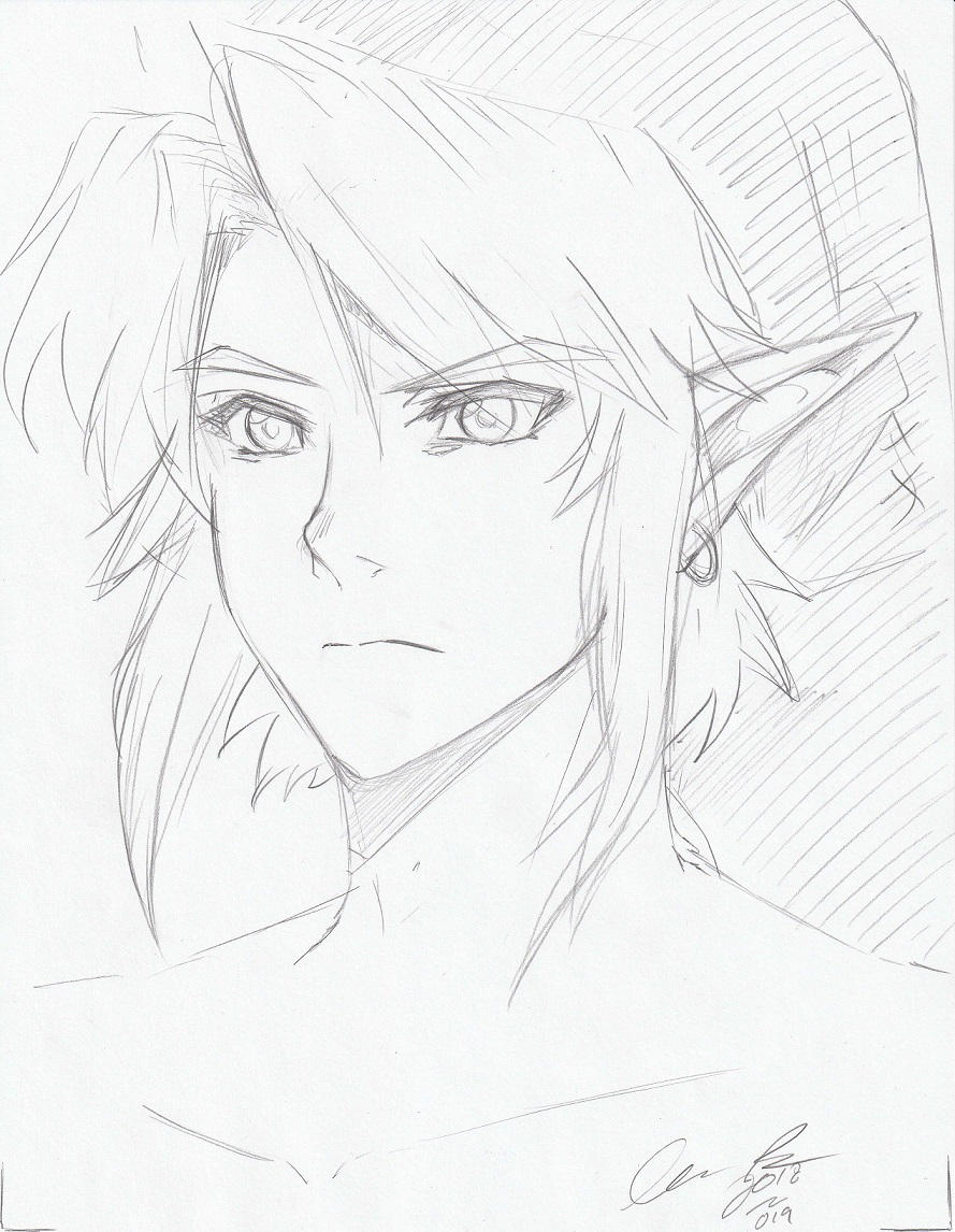 Twilight Princess Link by LordessAnnara14