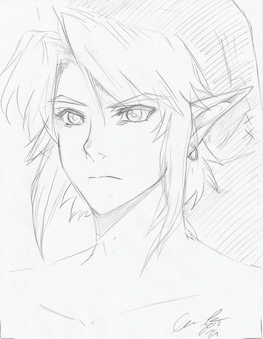 Twilight Princess Link by LordessAnnara14