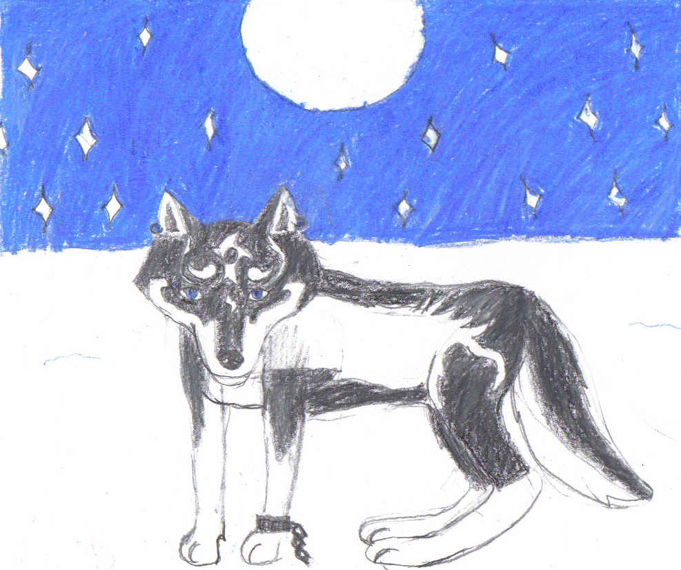 Lone wolf by lilshadowlover642