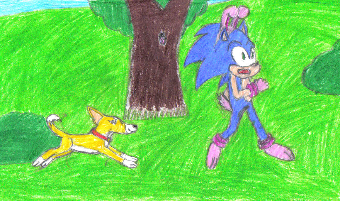 Bunny Sonic by lilshadowlover642