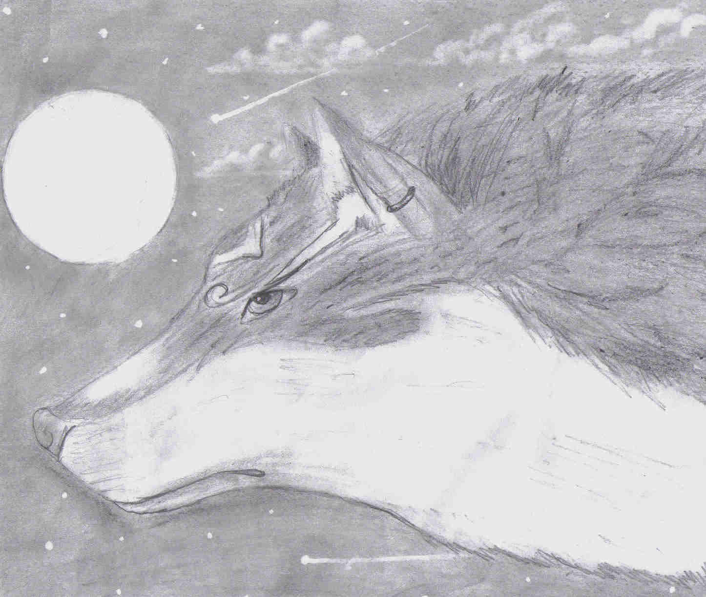 Realistic wolf link by lilshadowlover642