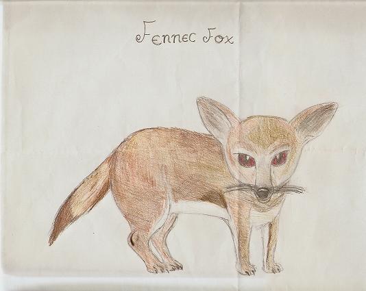 Fennec Fox :) by Malachite