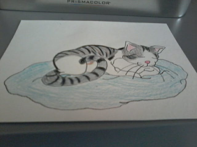 My cat by Marilyn