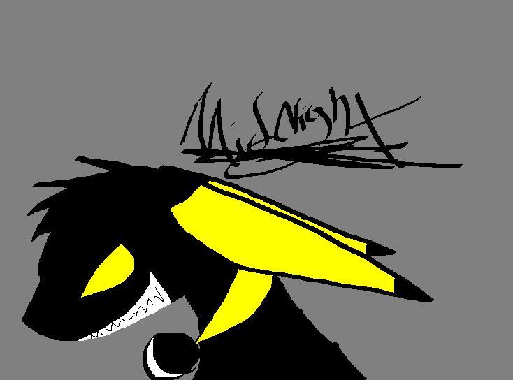 Midnight ish teh Evil by Midnight-Raccoon