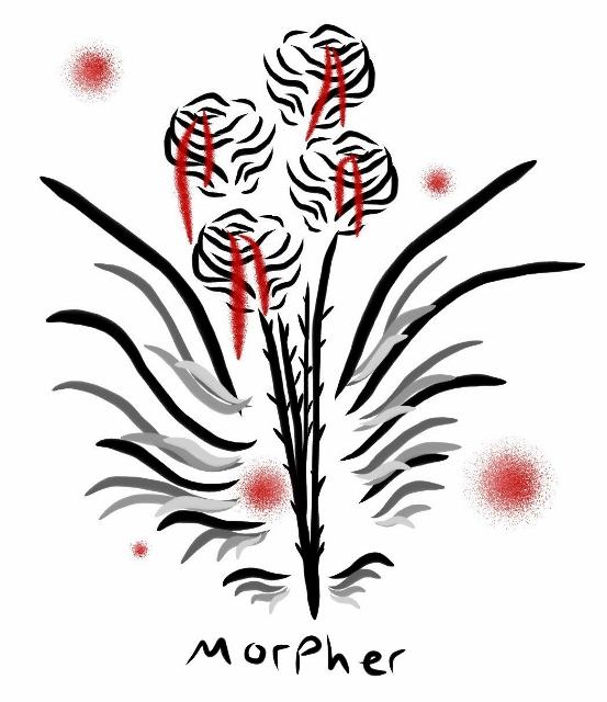 Bleeding Black Roses by Morpher