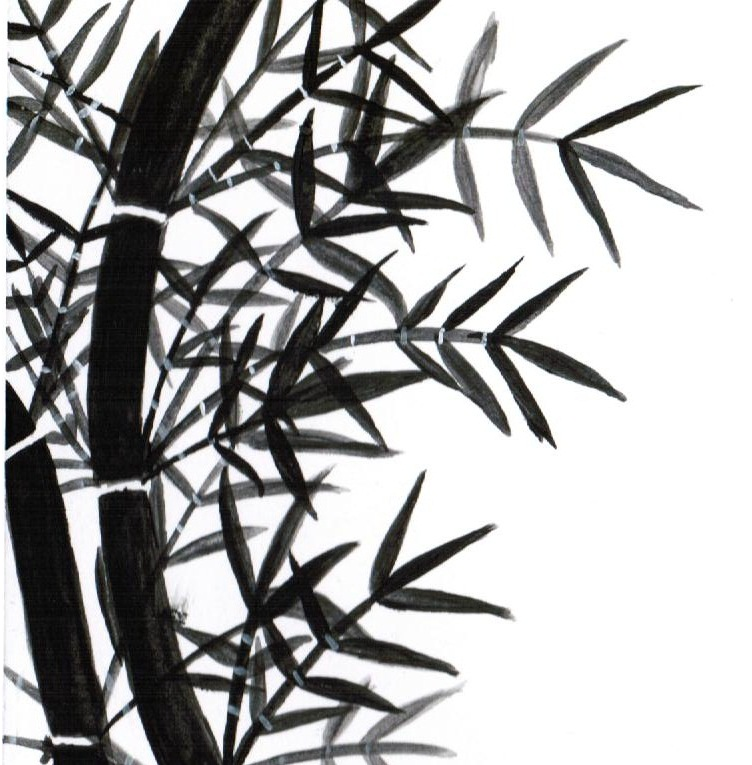 Bamboo Doodle by My-Melody