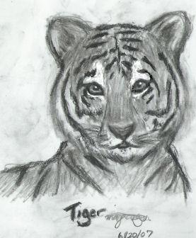 Tiger by magicsinyou