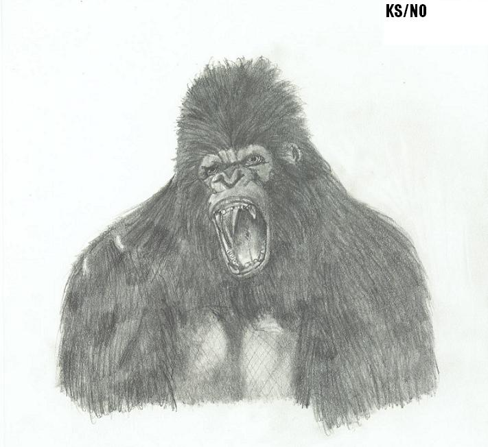 Kong Pencil Sketch (WIP) by NemesisOblivion