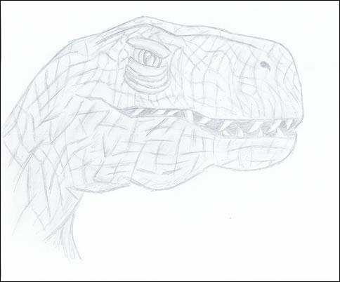 Raptor by Nighthawk