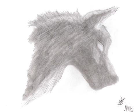 Moonlit Wolf by Nighthawk
