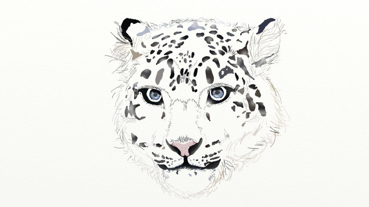 Snow leopard by NinjaChan