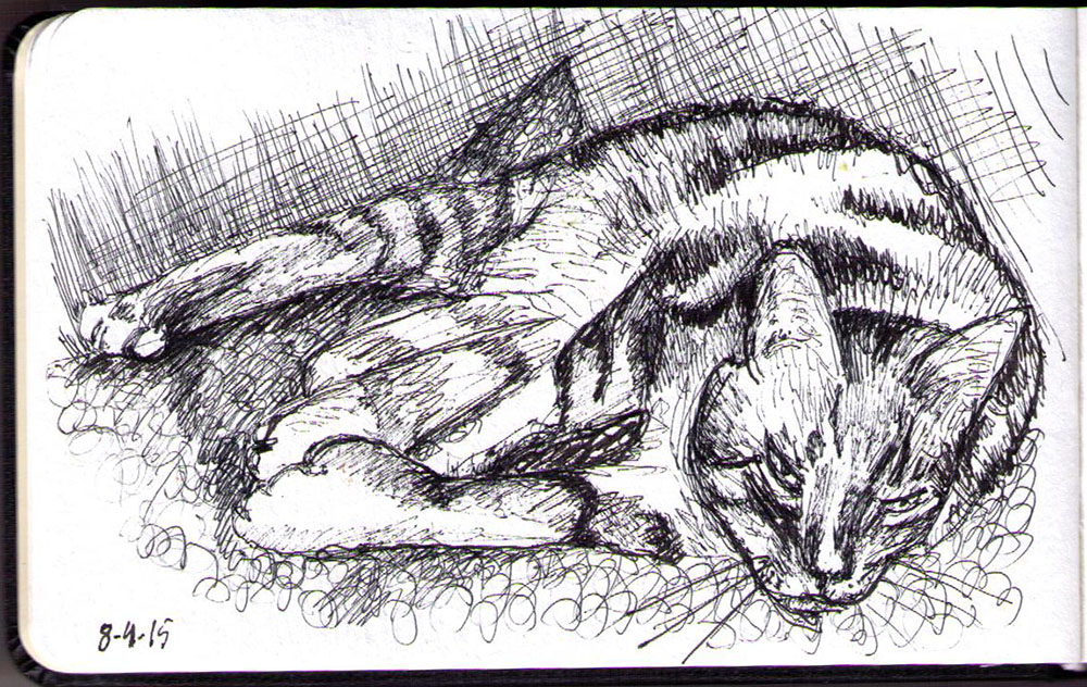 A very sleepy cat sketch by OneDrawingDaily