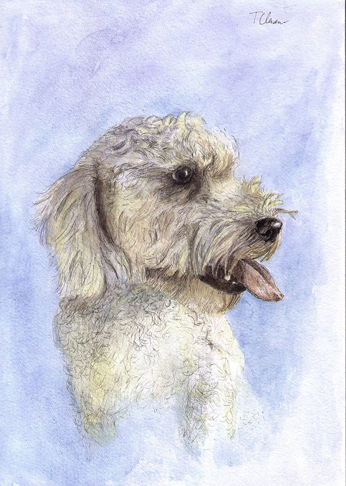 Baci the dog by OneDrawingDaily