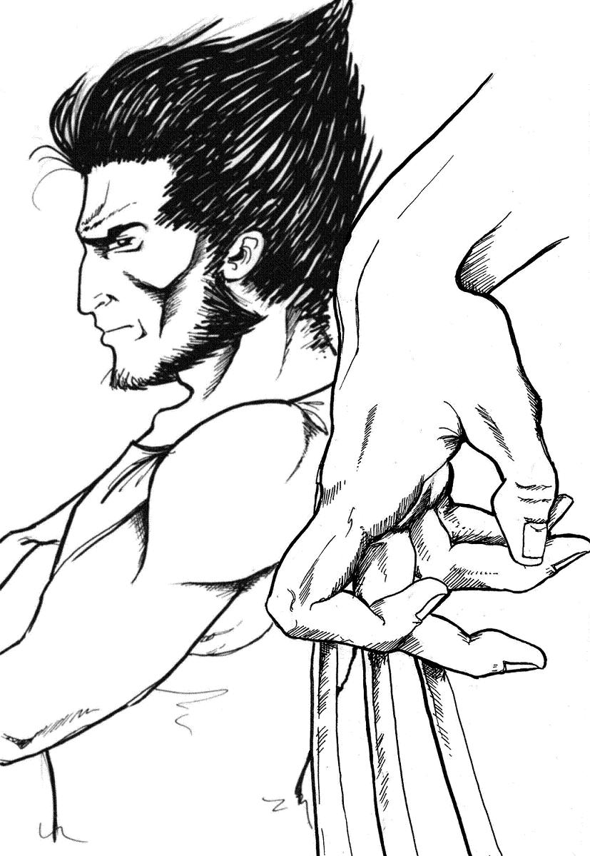 Wolverine by Pester