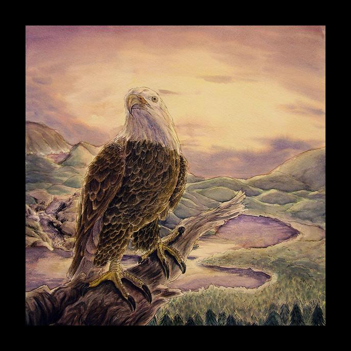 Sunset Eagle Final by Pink_Shimmer