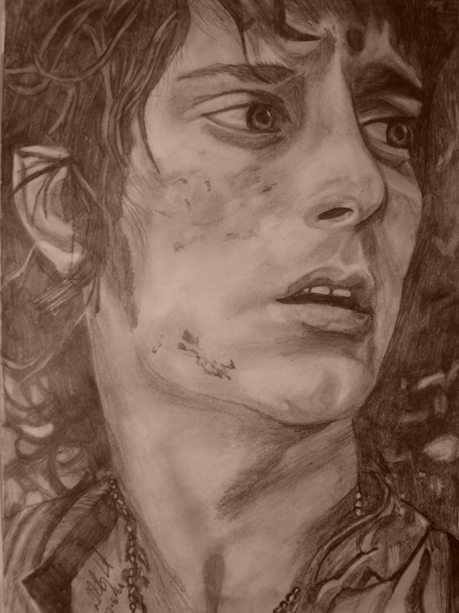 Frodo's Darkness by pebbles