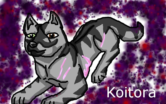 My Ginga OC, Koitora by prettykitty97