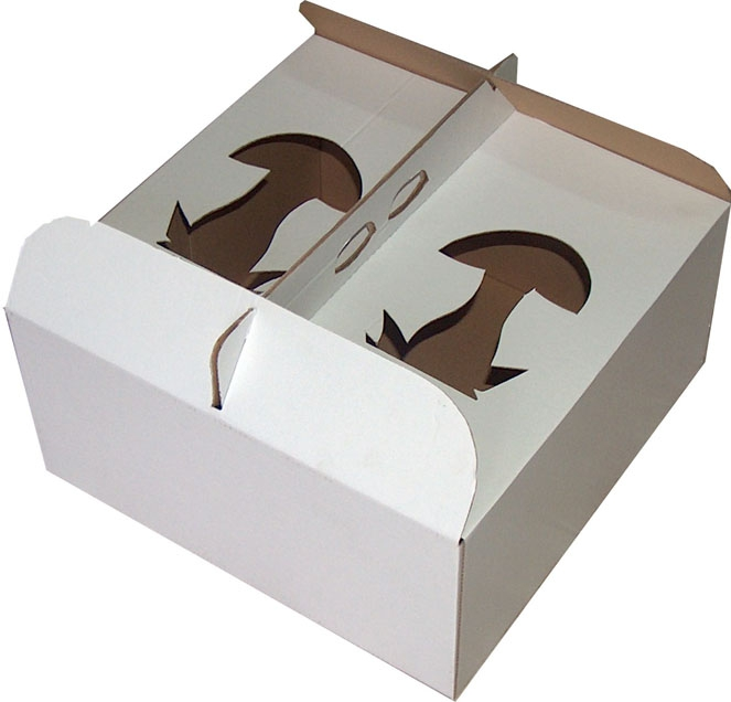 Cutii carton Baia Mare by RalomMaramures