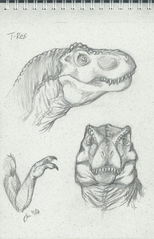 T-Rex by Rike