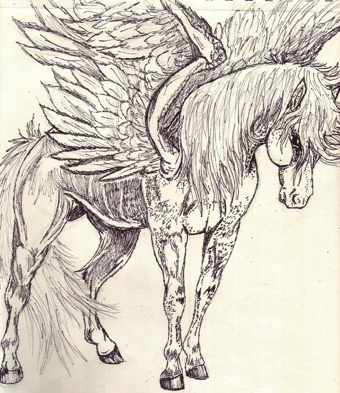 Pegasus Sharpie sketch by rolla_roach