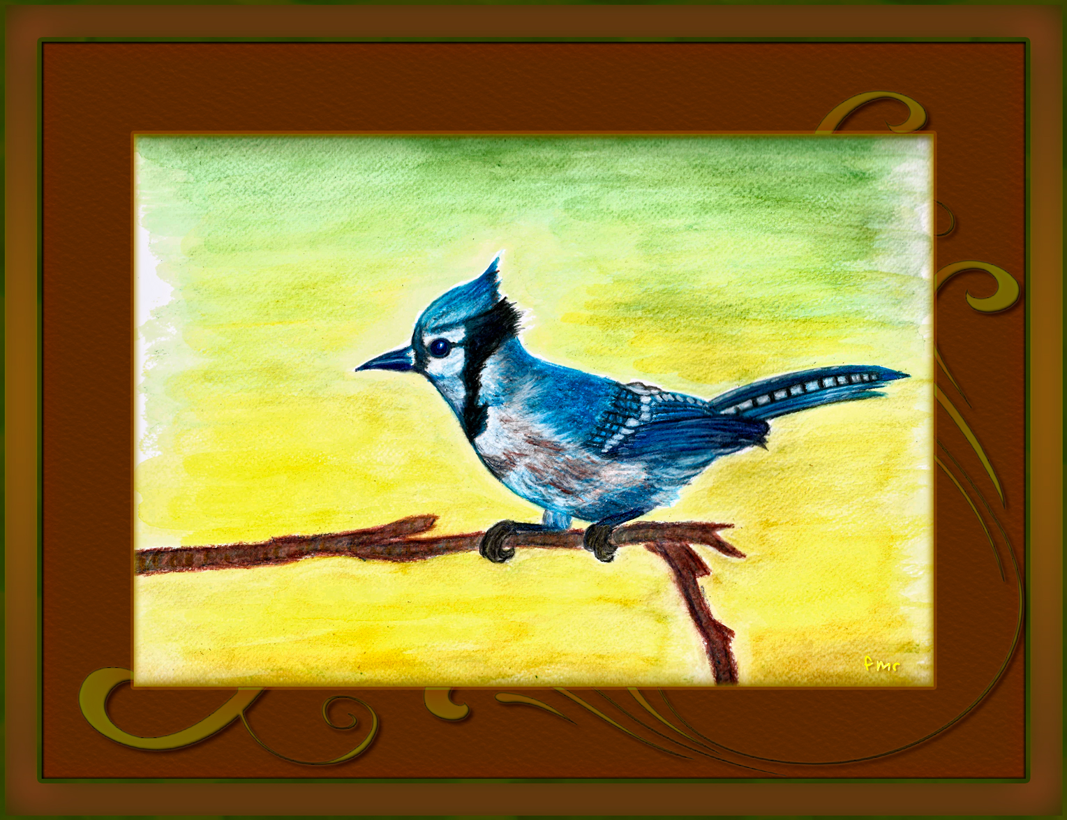 Blue Jay by Saltwater