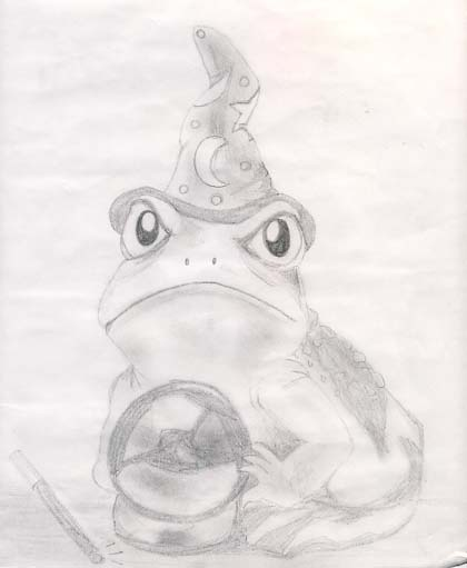 Frog Wizard by Shadowcat_13_666