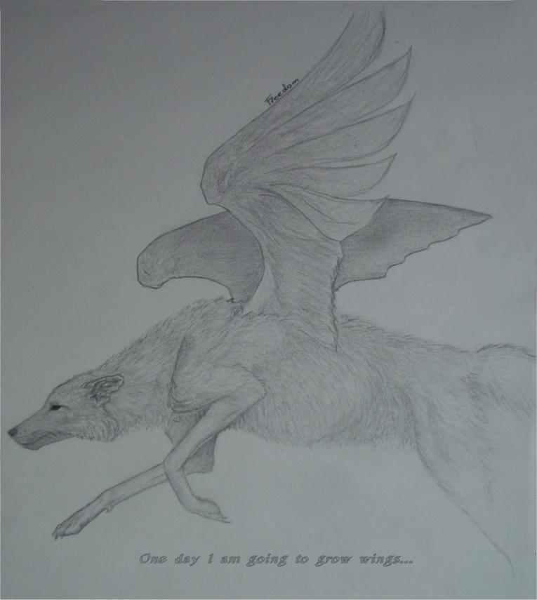 Freedom by Shrike
