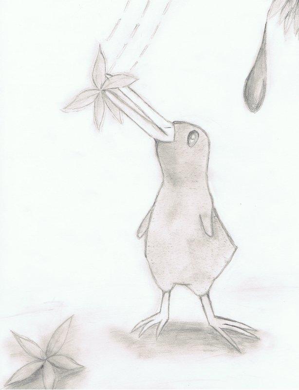 Kiwi by SilentKiwi
