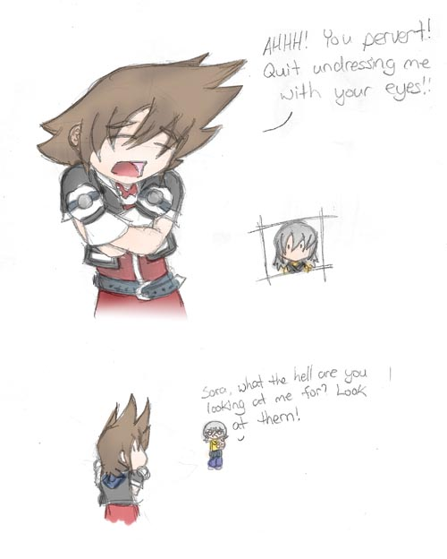 Sora strikes back against Sora nudity. o_o by Snake_Eyes