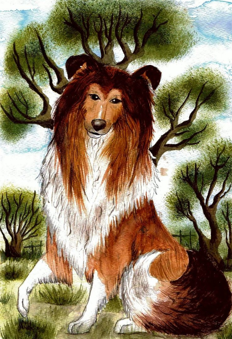 Rough Collie Dog by SofeSmity