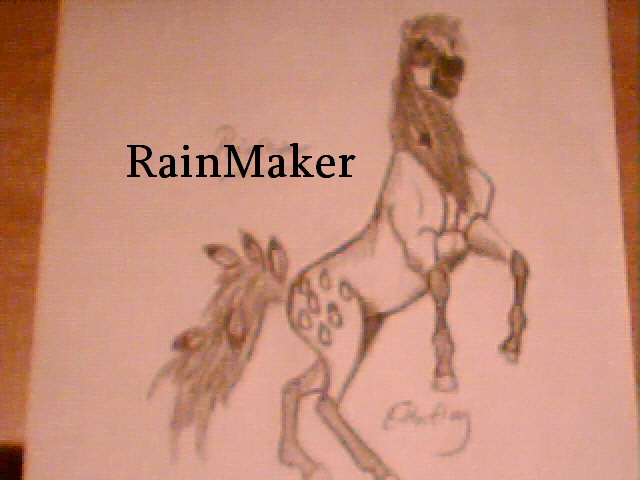 RainMaker by SpiritRandomer