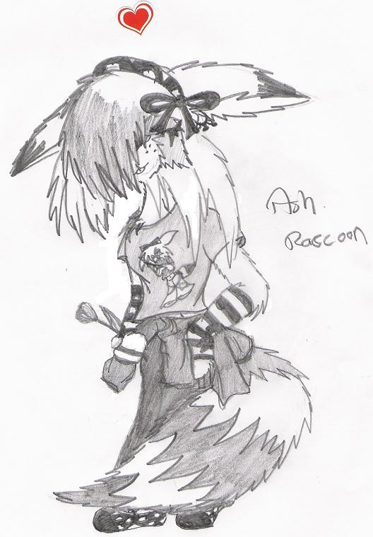 ash raccoons new look by Splixx