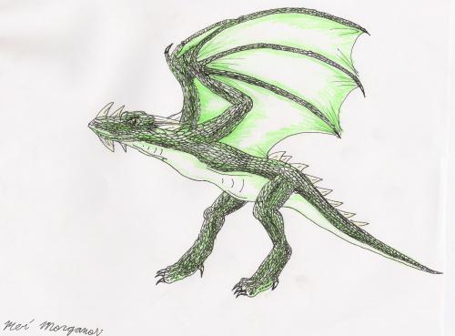 A green dragon by Star_The_Hedgehog